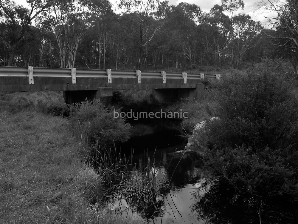 little creek at the top of gibaltar ranges national park nthn nsw by bodymechanic