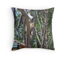 smart squirrel Throw Pillow