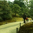 Japan - Walk Through The Park by tmac