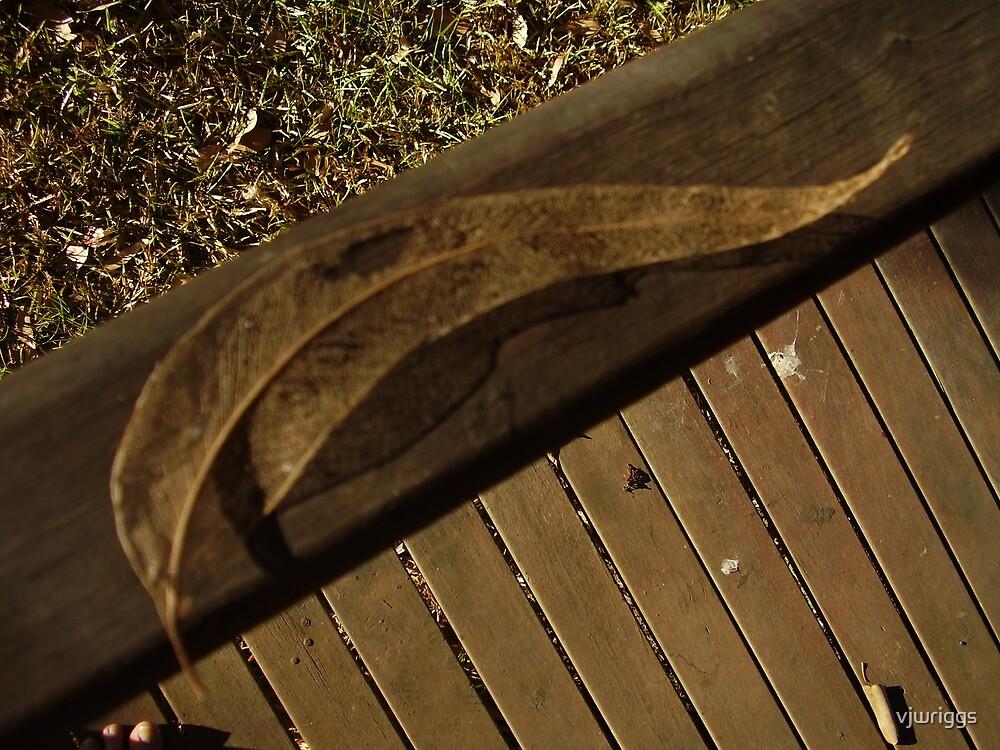 Torn leaf by vjwriggs