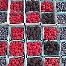 Tic Tac Berries by Christine  Wilson