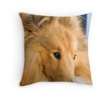 shetland sheepdog Throw Pillow