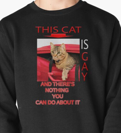 This Cat Is Gay Pullover