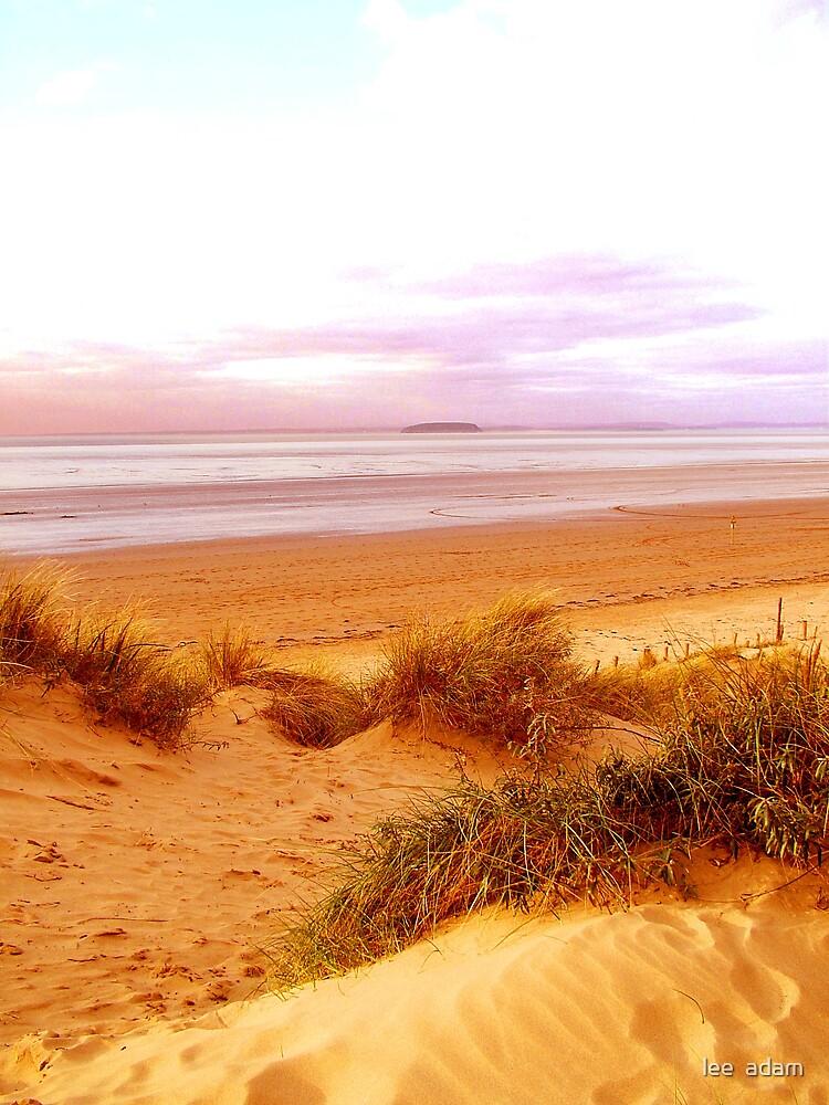 cold beach by lee  adam
