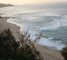Johanna Beach early morning by deborah