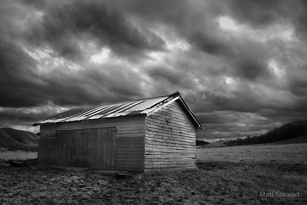 The Shed by Matt Stewart