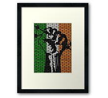 Irish Freedom Fist Flag  Framed Print