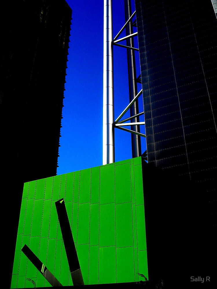 The Greening of Brisbane by Sally R