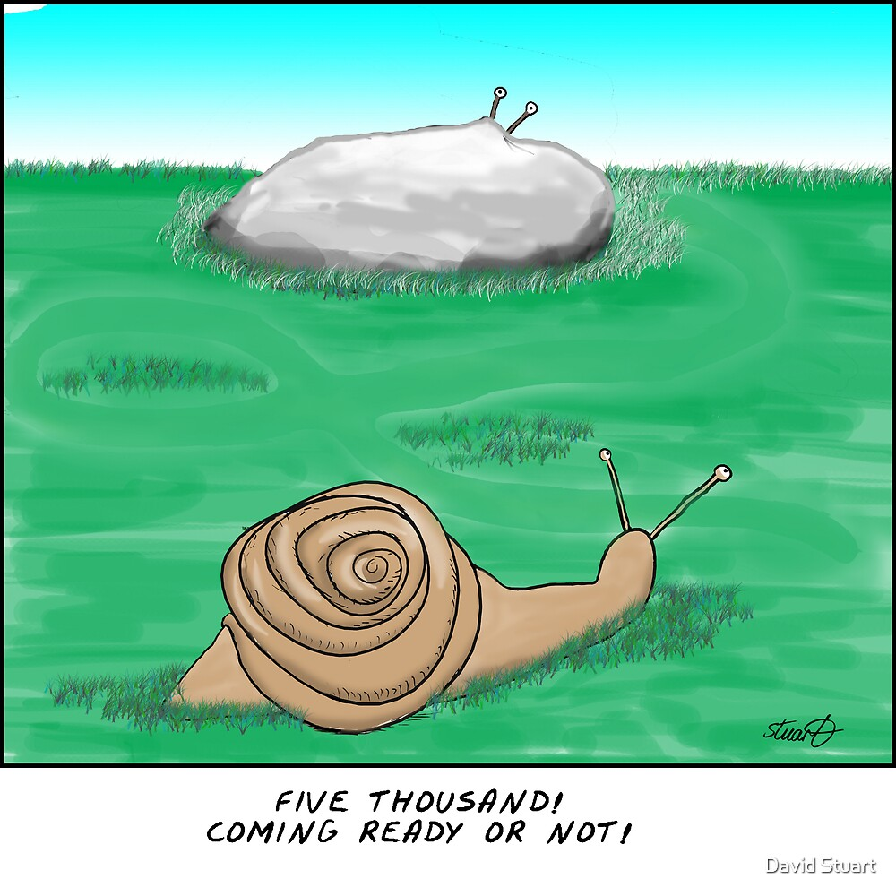 snail hide and seek  by David Stuart