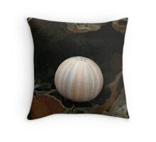 Fragile Earth Throw Pillow