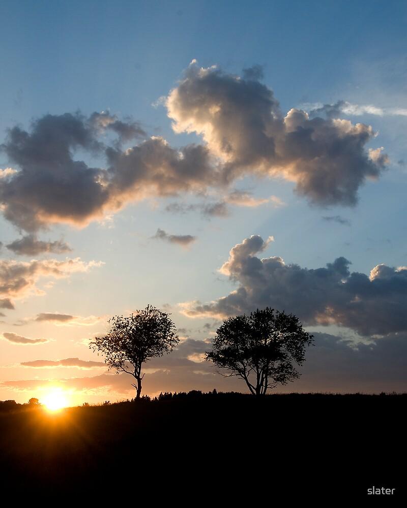 Muskoka Sunset by slater
