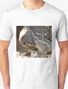 Bowing Barn Owl T-Shirt
