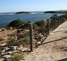 Path from Little Congwong to Congwong Beach  by Ozcloggie