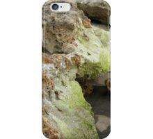 Mossy Rocks iPhone Case/Skin