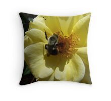 bee on yellow rose Throw Pillow