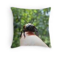 bumble bee clsoe up Throw Pillow
