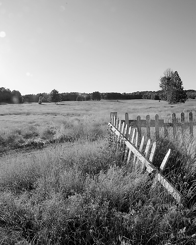 fence by slater