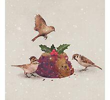 Christmas Pudding Raid  Photographic Print