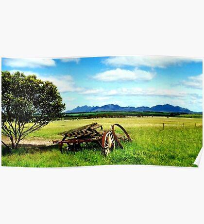 Splender in the Grass Poster