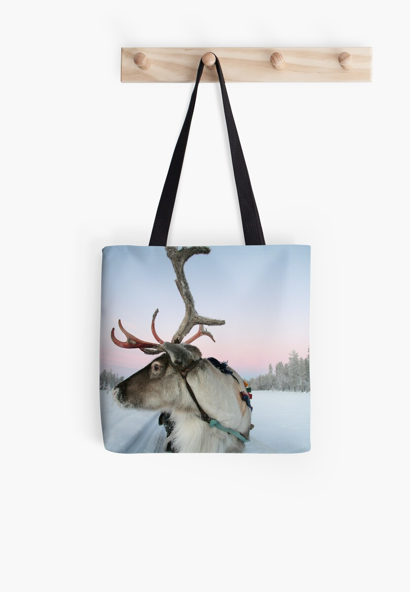 Lapland Reindeer by Trifle