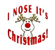 I Nose It's Christmas by Vy Solomatenko