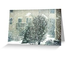 April snow Greeting Card