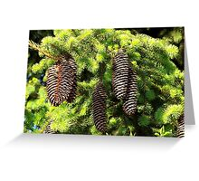 Ever.......... green Greeting Card