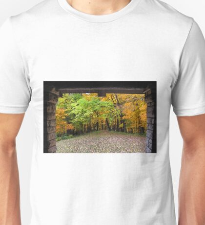 Pathway Into The Autumn Forest Unisex T-Shirt
