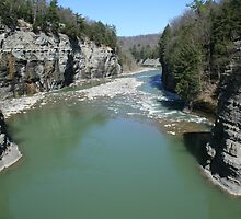 Letchworth State Park NY by gary