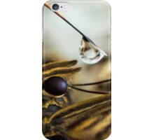 Two Wings One Soul iPhone Case/Skin