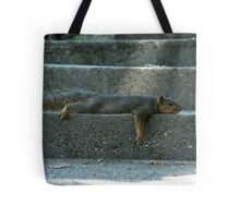 Lazy Crazy Day  Tote Bag
