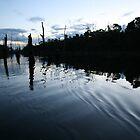 Timber Lake by Alex Evans