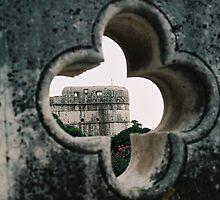 Stone flower by Kostandina Zafirovska