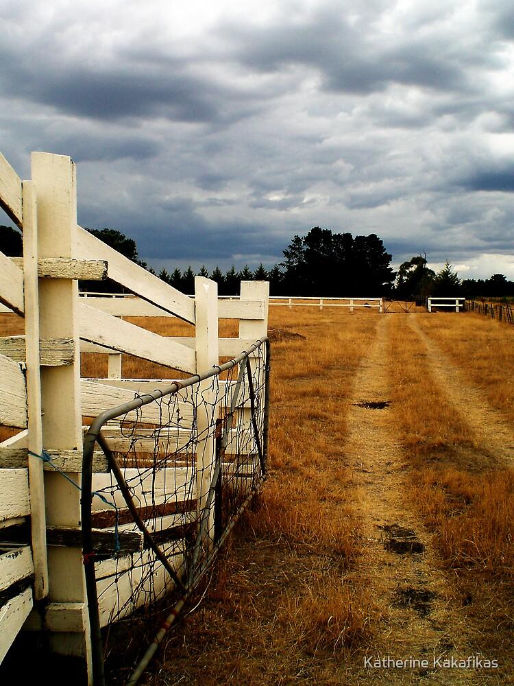 Cattle Ramp by Katherine Kakafikas