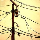 """You Pay for the View - """"Wired"""" Series by Monica Vanzant"""