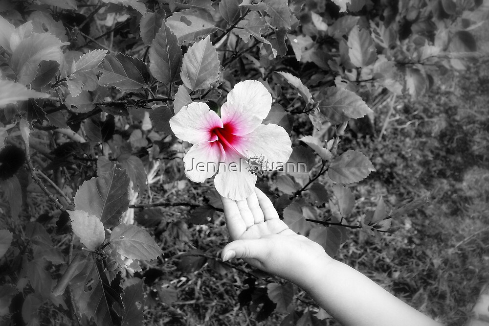 Sweet Innocence by Jennel Swann