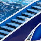 Marine Blue by phil decocco