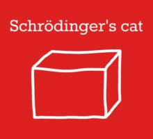 Schrödingers Cat by no-doubt