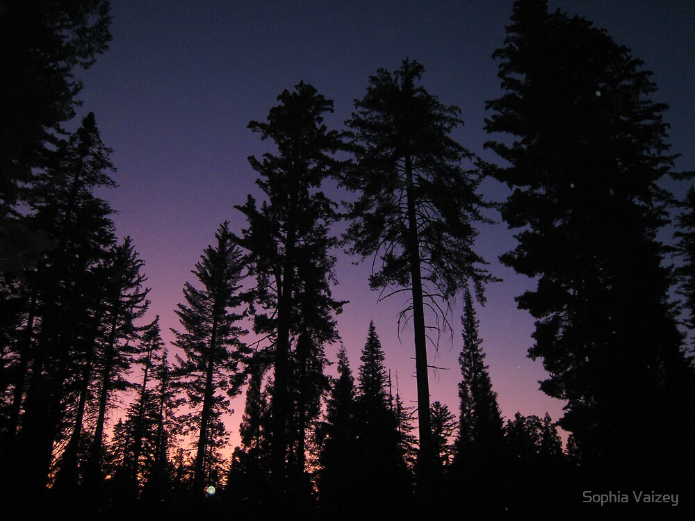 Dusk in King's Canyon, California by Sophia Vaizey