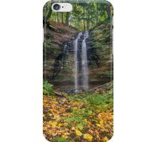 Tannery Falls Autumn iPhone Case/Skin