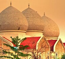 Mosque by Atif Hussain