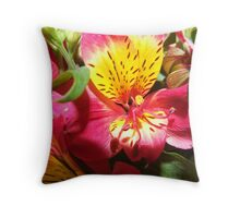 alstroemeria Throw Pillow