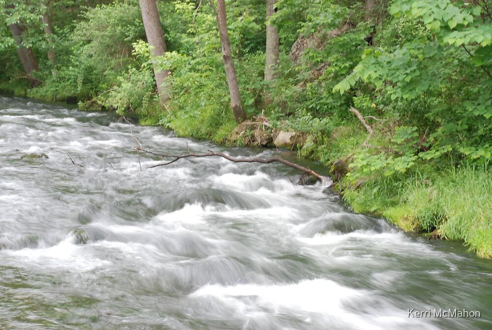 Hatchery Stream by Kerri McMahon