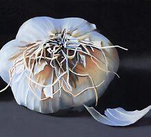 Garlic Bulb fine art painting by ria hills