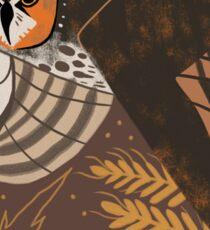Familiar - Long Eared Owl Sticker