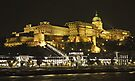 Royal Palace, Budapest at night by Graeme  Hyde