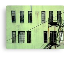 Tall, slim... and green Canvas Print