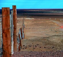 The Longest Fence in the World by bombamermaid
