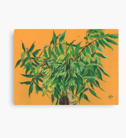"""Ash-tree"", green & yellow, floral art Canvas Print"