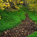 Autumn path by farmboy